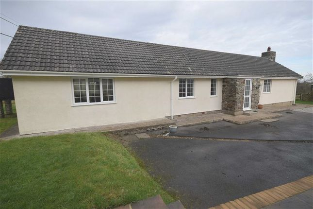 Thumbnail Detached bungalow to rent in Glenmore Farm, Nr Roborough, Devon