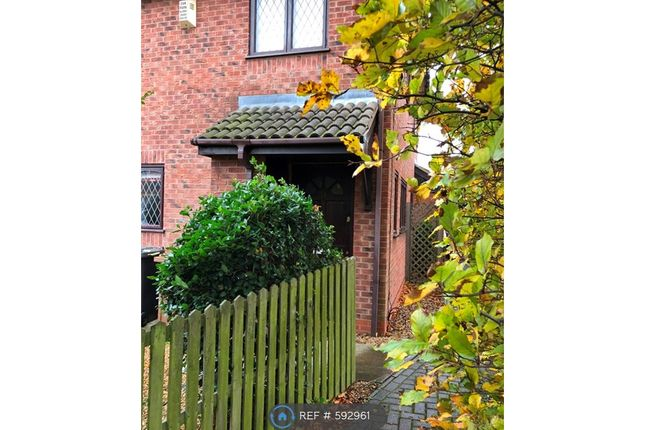 Thumbnail Semi-detached house to rent in Wasdale Gardens, Peterborough