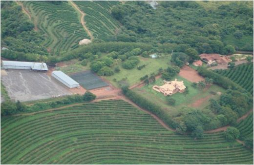 Thumbnail Farm for sale in Brejo, Alegre, Brazil
