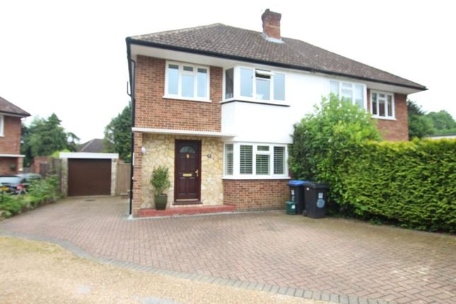 Thumbnail Semi-detached house to rent in St. James Close, Woking