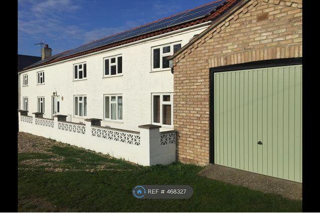Thumbnail Detached house to rent in Qua Fen Common, Soham, Ely