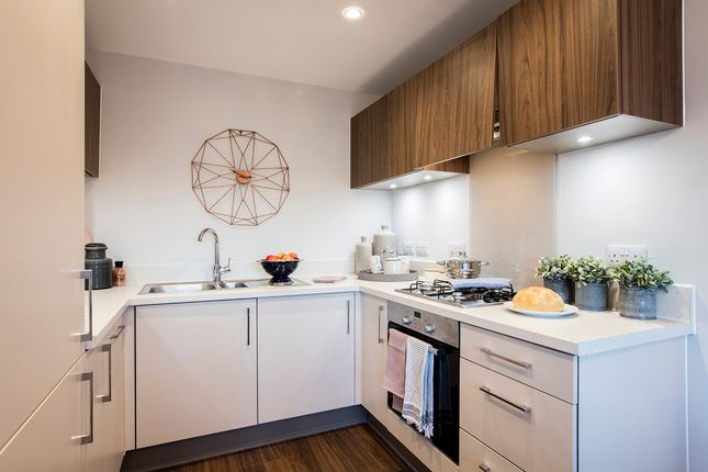"""3 bedroom property for sale in """"The Halstead"""" at Yarrow Walk, Red Lodge, Bury St. Edmunds"""