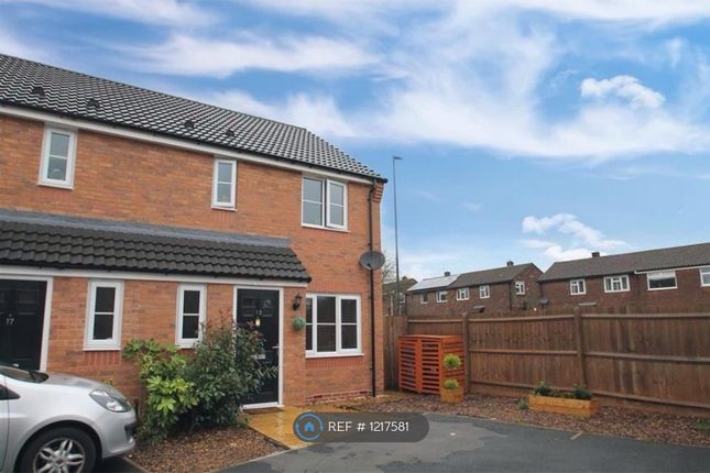 Thumbnail Semi-detached house to rent in Newham Close, Derby