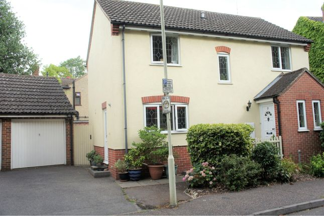 Thumbnail Detached house for sale in Admirals Walk, Chelmsford