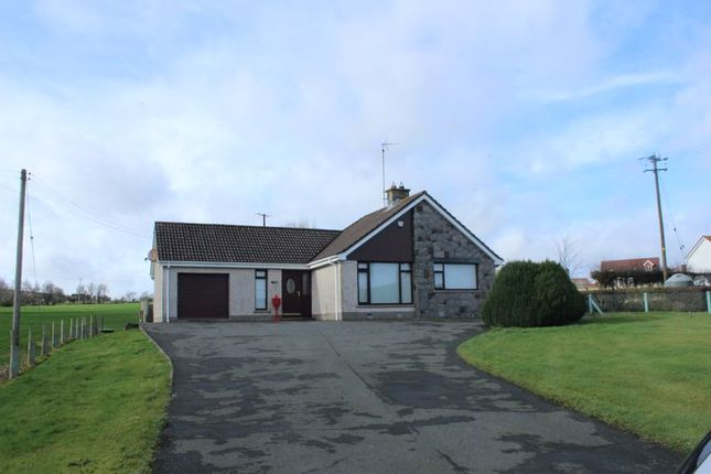 Thumbnail Detached bungalow to rent in Rostrevor Road, Hilltown, Newry