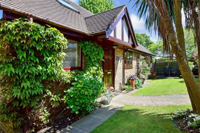 Thumbnail Bungalow for sale in King Henrys Road, Lewes, East Sussex
