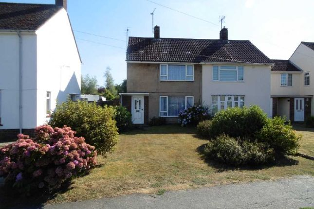 Thumbnail Semi-detached house for sale in Laurence Avenue, Witham