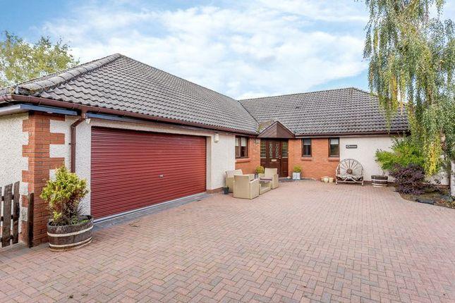 Thumbnail Detached bungalow for sale in Braes Of Conon, Conon Bridge, Dingwall