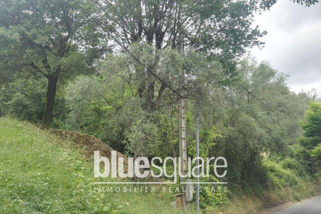 Thumbnail Land for sale in Le Bar-Sur-Loup, Alpes-Maritimes, 06620, France