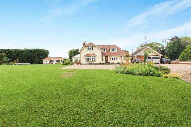 Thumbnail Detached house for sale in Castledon Road, Downham, Essex