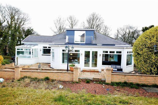 Thumbnail Detached house for sale in Hylton Bank, South Hylton, Sunderland