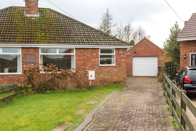 Thumbnail Semi-detached bungalow to rent in Windmill Way, Haxby, York, North Yorkshire