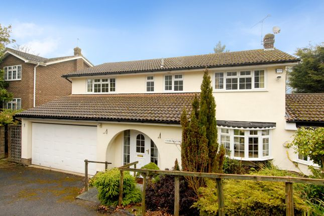 Thumbnail Detached house to rent in Birling Park Avenue, Tunbridge Wells