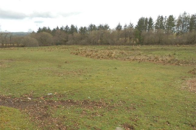 Commercial property for sale in Land At Pantycerdin, Creuddyn Bridge, Lampeter