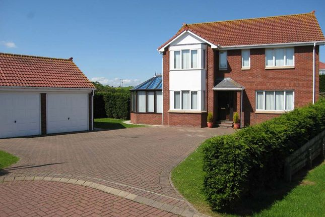 Thumbnail Detached house for sale in Meadow Grange, Berwick Upon Tweed, Northumberland