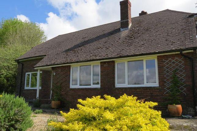Thumbnail Detached bungalow to rent in Sherborne Road, Cerne Abbas, Dorchester