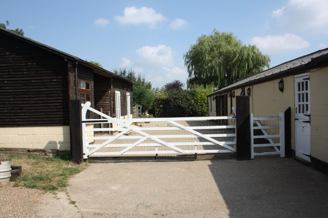 Thumbnail Equestrian property to rent in Brawlings Lane, Chalfont St Peter