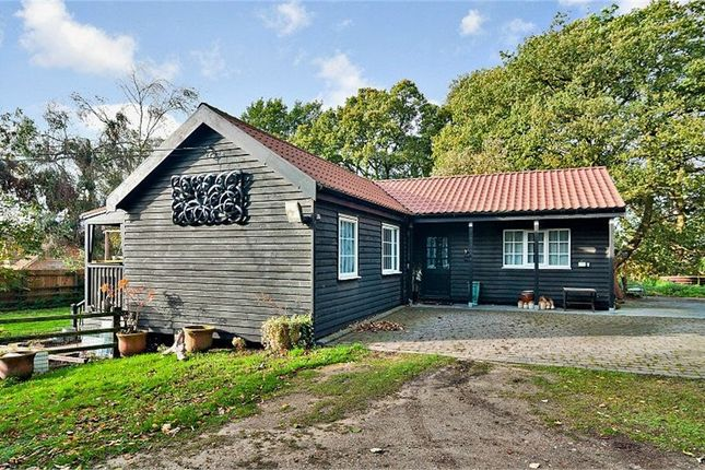Thumbnail Detached bungalow for sale in Playford, Playford, Ipswich, Suffolk