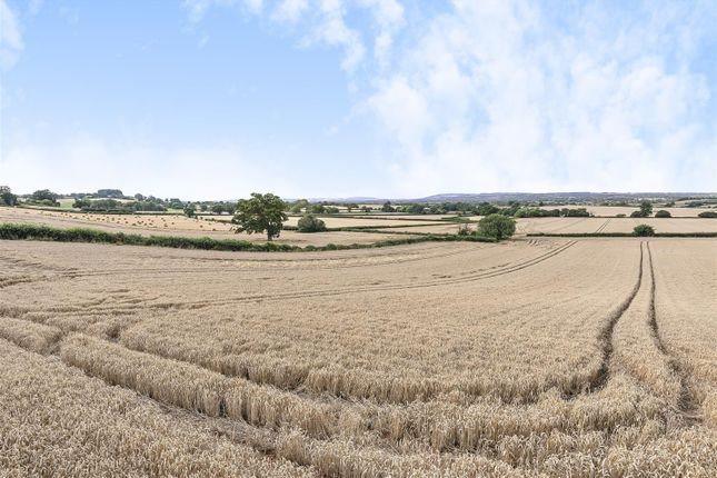 521388 (5)E c of Lillesdon, Taunton TA3