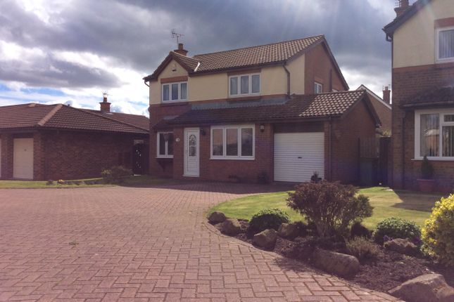 Thumbnail Detached house for sale in Hilton Drive, Peterlee