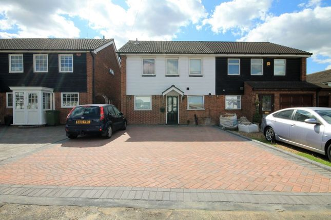 Thumbnail Semi-detached house to rent in Maytree Close, Rainham
