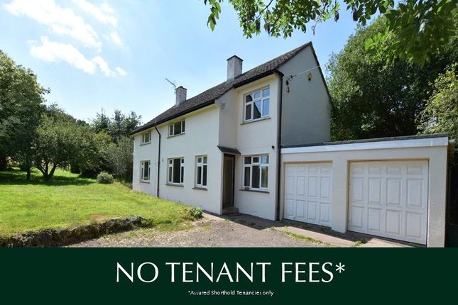 Detached house to rent in Poltimore, Exeter