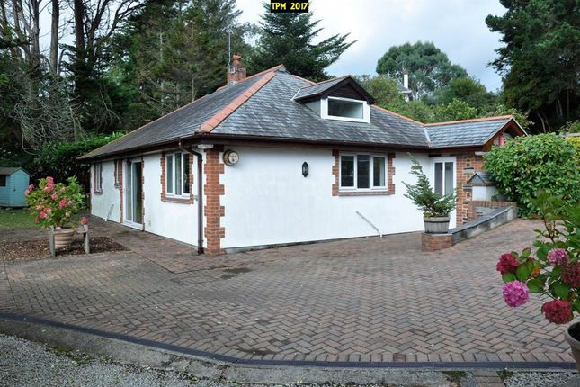 Thumbnail Bungalow to rent in Swanpool, Falmouth
