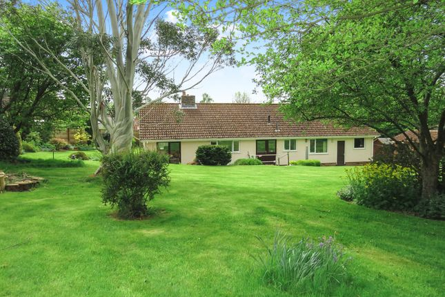 Thumbnail Detached bungalow for sale in Winpenny Lane, Kingston St. Mary, Taunton