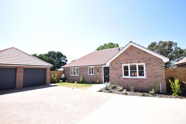 Thumbnail Detached bungalow for sale in Holland Road, Little Clacton, Clacton-On-Sea