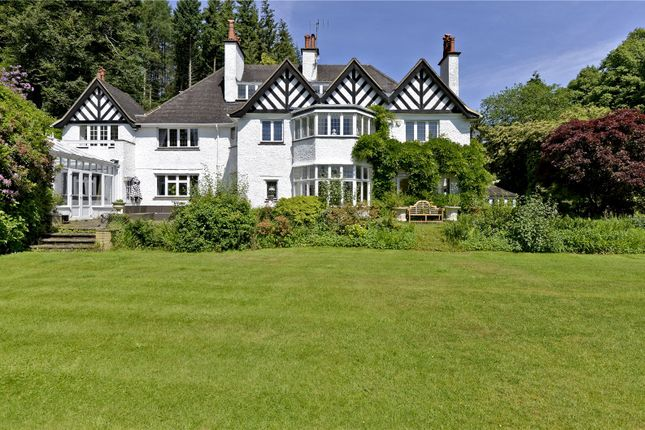 Thumbnail Detached house for sale in Marley Heights, Haslemere, Surrey
