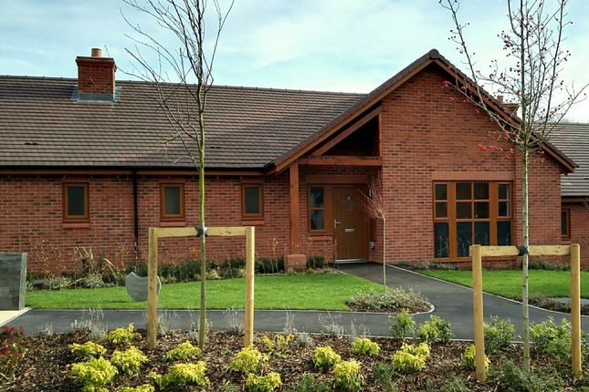 Thumbnail Terraced bungalow for sale in Albany Lane, Balsall Common, Coventry