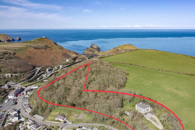 Thumbnail Detached house for sale in St. Juliot, Boscastle