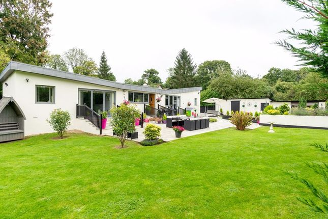 Thumbnail Detached bungalow for sale in Salmons Road, Effingham, Leatherhead