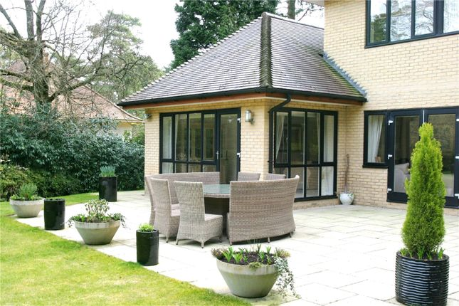 Picture 13 of Bury Road, Branksome Park, Poole BH13