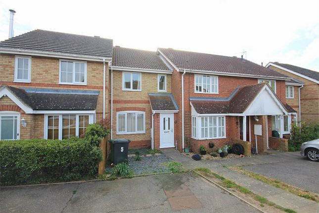 Thumbnail Terraced house to rent in Hawthorn Close, Halstead, Essex