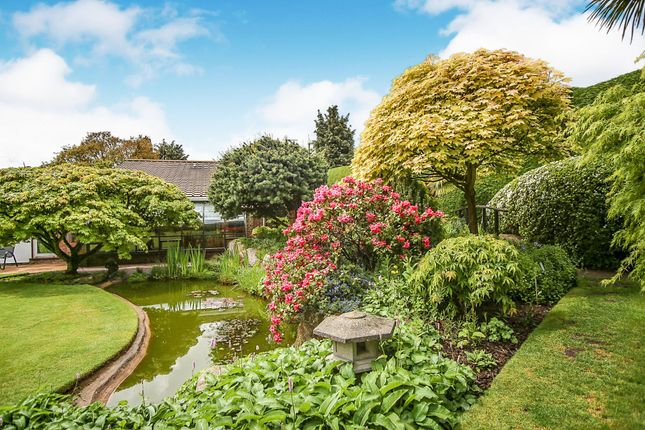 Thumbnail Detached bungalow for sale in Heath Road, Barming, Maidstone