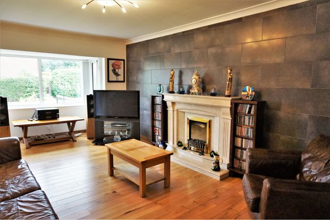 Thumbnail Bungalow for sale in The Croft, Hull