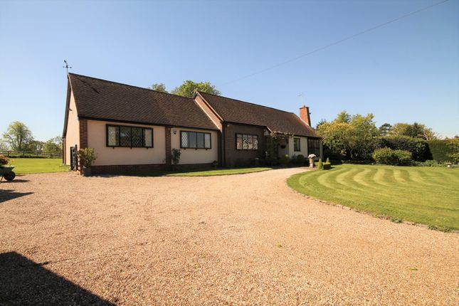 Thumbnail Detached bungalow for sale in Harlow Road, Roydon, Harlow
