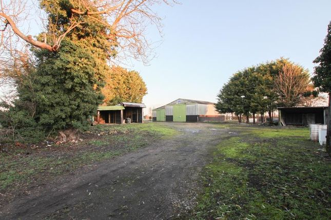 Thumbnail Land for sale in Bancroft Lane, Soham, Ely