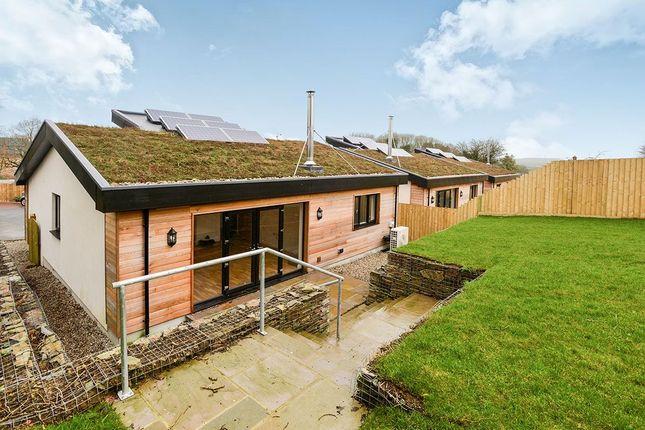Beech Meadow, Chilsworthy, Holsworthy EX22