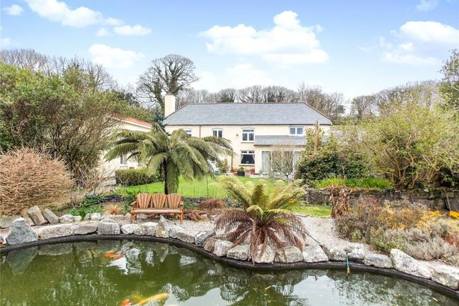 Thumbnail Detached house for sale in Trenance Farm, Trenance Road, St Austell