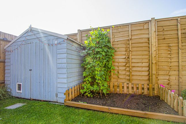 Garden of Lily Road, Frome BA11