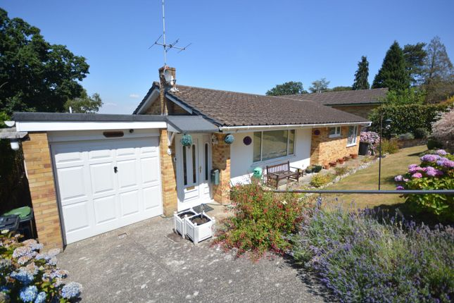 Thumbnail Detached bungalow for sale in Central Avenue, Corfe Mullen, Wimborne