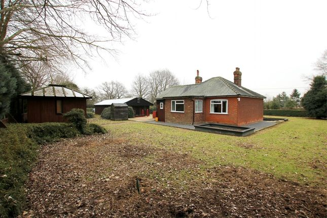Thumbnail Detached bungalow for sale in Hollow Road, Felsted, Dunmow, Essex