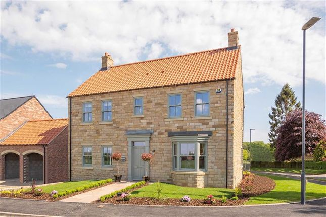 Thumbnail Detached house for sale in Knaresborough Road, Bishop Monkton, North Yorkshire