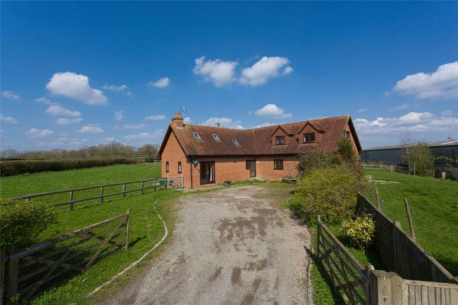 Thumbnail Detached house to rent in Old Park Farm, Horsham Road, Rusper, West Sussex
