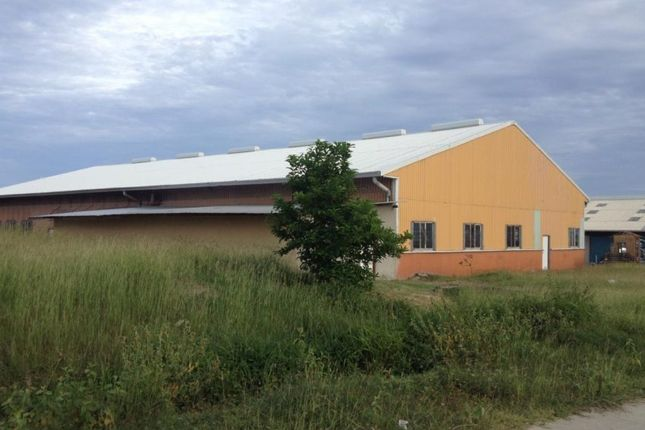 Thumbnail Industrial for sale in Vieux Fort Industrial Estate Property, Vieux Fort, St Lucia