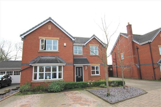 Thumbnail Property to rent in The Ferns, Kirkham, Preston