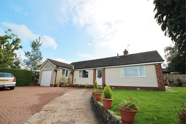 Thumbnail Detached bungalow for sale in Low Row, Brampton, Cumbria