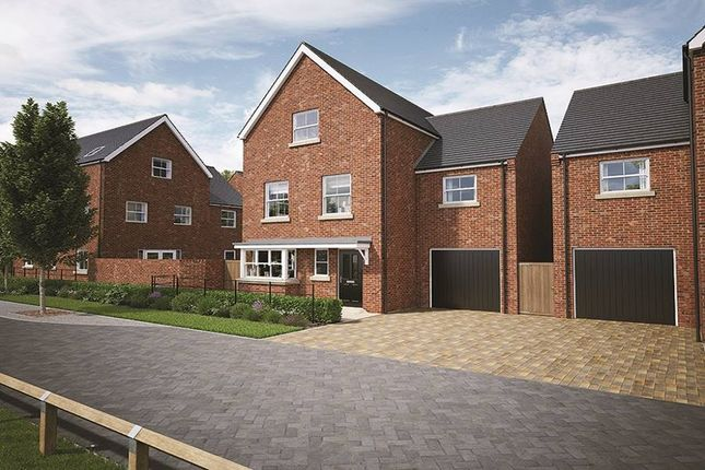 """Thumbnail Property for sale in """"The Notley"""" at Church Lane, Stanway, Colchester"""